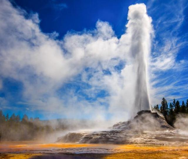 Erupting Geyser In Yellowstone National Park