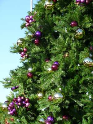 grape ornaments on Christmas Tree