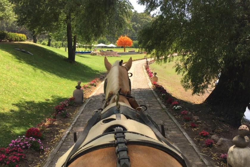 ride_horse_sierra_lago