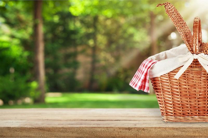 Algunas Curiosidades Sobre el Pícnic y su Historia