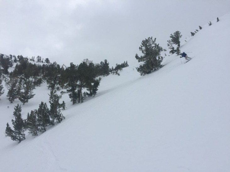 Skiing the end of the powder just before the rain on North Table Mountain on 1/17