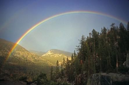 love-rainbow