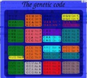 genetic_code