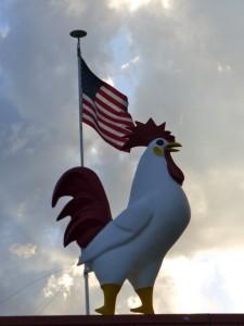 Chicken & Flag Tamara Cohn 6-14-15