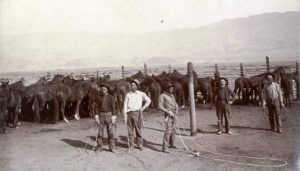 a1011-8-cowboys-mairs-ranch-near-independence-ca-1900