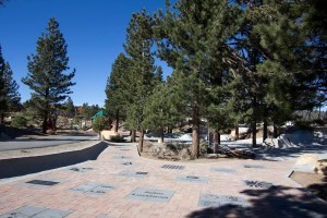 new-skate-park-donor-plaza_small