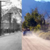 Auto Tour Rd then and now/Miyatake NPS