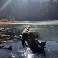Emerald Lake 11-18-18/Photo courtesy of Barbara Richter