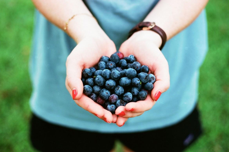 antioxidant rich food