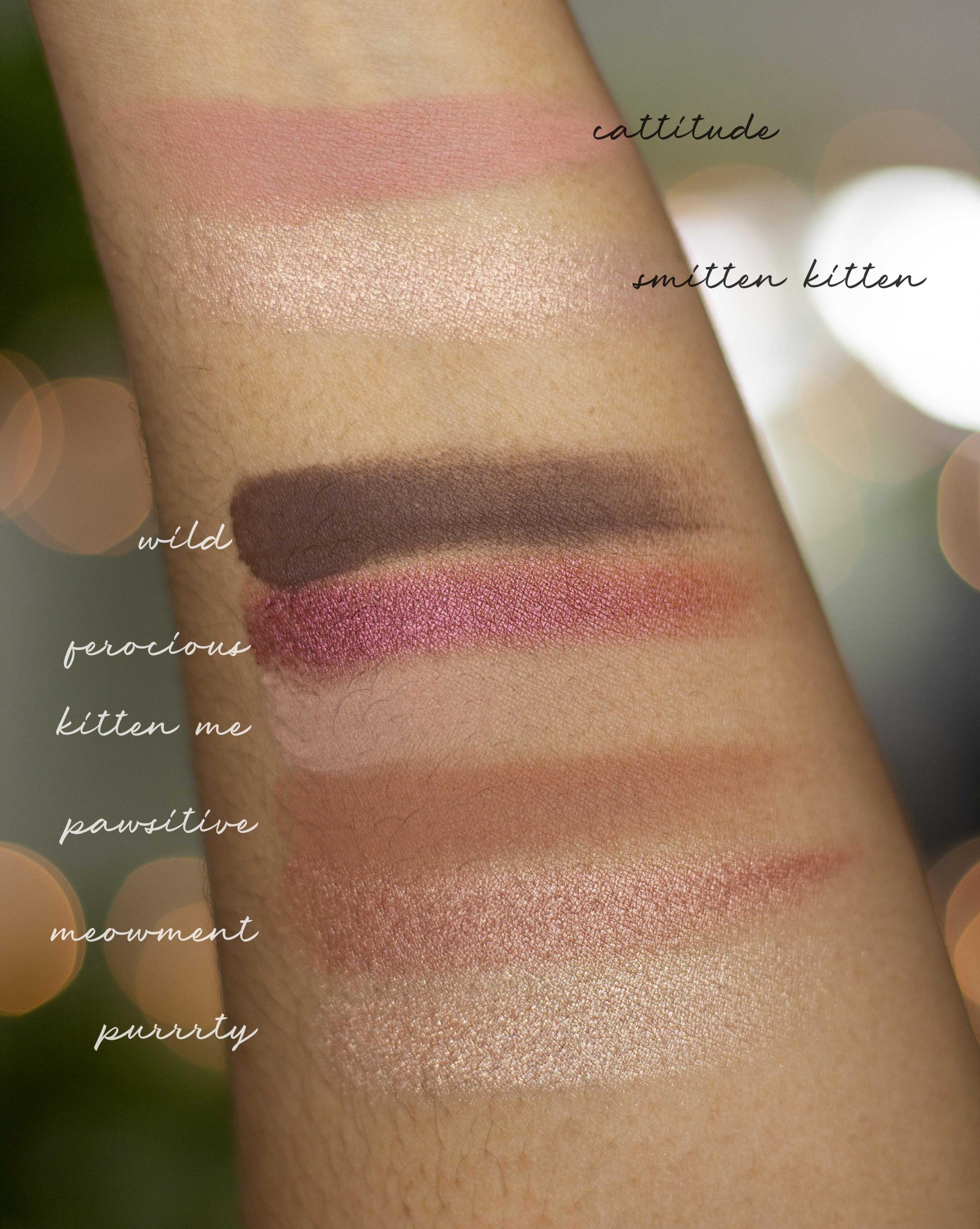 Tarte Maneater Palette swatches in brown skin