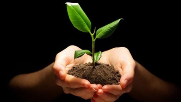 Consejos para llevar una vida sostenible
