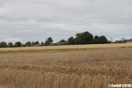 Somme Battlefield WWI