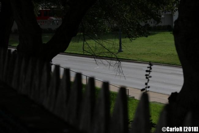 Kennedy Assassination Oswald Dallas Grassy Knoll Fence