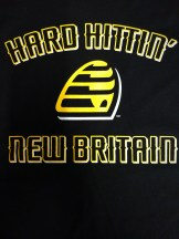 NB Bees Close up Shirt Front new graphic