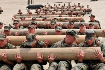 Taming a log