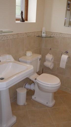Classic Burlington WC and Basin with pedestal