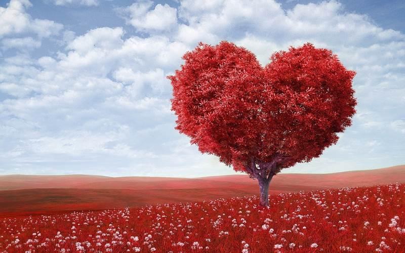 En casi todas las culturas el amor es uno de los significados del color rojo