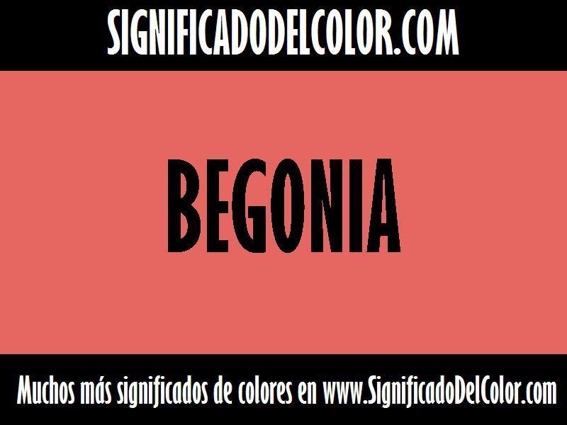 ¿Cual es el color Begonia?