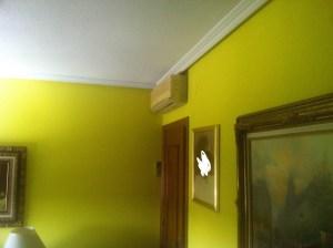 el color verde limón se utiliza en decoración