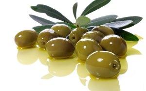 el fruto del olivo es el que da nombre al color oliva