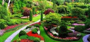 ▷ Sonhar com Jardim【IMPERDÍVEL】
