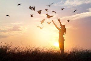 6 Sinais De Que Você é Uma Alma Livre