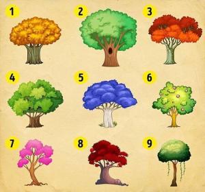 Escolha uma árvore e descubra o que mudará em sua vida em breve!