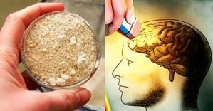 Este é o Remédio Que Os Neurologistas Recomendam Para Perda De Memória, Se Você Não Tiver Dinheiro