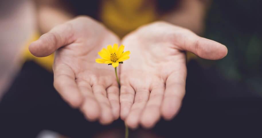 25 Conselhos Espirituais Que Mudarão Sua Vida Para Sempre