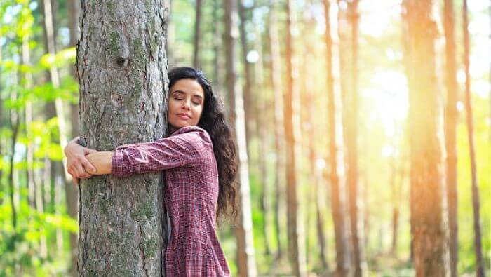 Abrace estas 14 espécies de árvores e cure várias partes do seu corpo