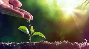 Como começar uma nova vida a partir do zero: 3 etapas que ajudarão na mudança
