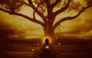 20 Provérbios De Milhares De Anos Que Vão Trazer Muita Sabedoria Para Sua Vida