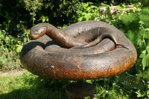 ▷ Sonhar Com Cobra Marrom 【12 Significados Reveladores】