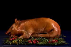 ▷ Sonhar Com Porco Morto 【Não se assuste com o significado】