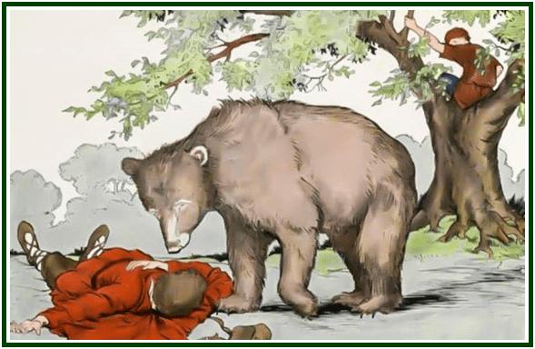 desenho do urso e suas amigas