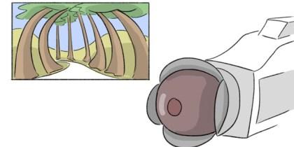 Grandangolare (ad occhio di pesce)