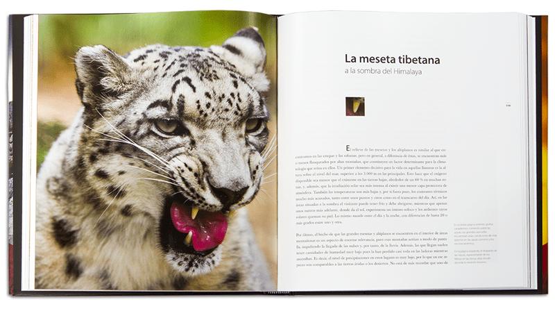 Reino Animal. La meseta tibetana