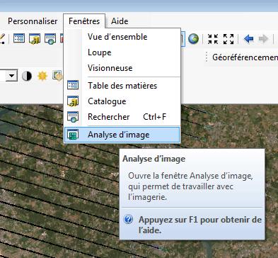 ouverture de la fenêtre analyse d'image d'arc map