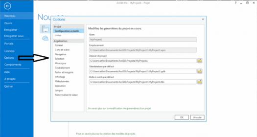 fenêtre de paramétrage des options de projet d'ArcGis Pro