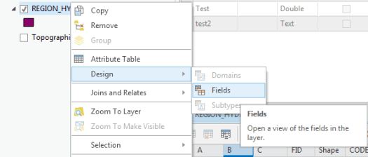 Change the name of a field in ArcGis: how to choose  | Blog