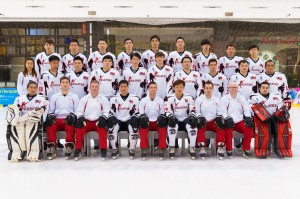 National Team 2015 (Men's)