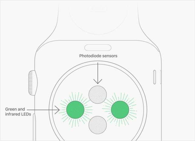 Apple Watch Kalp Sensörü