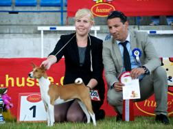 ...and BIS Puppy winner!