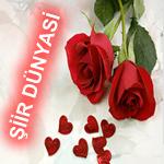 Sevgi ve Aşk Sözleri