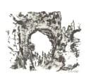 bryce arch