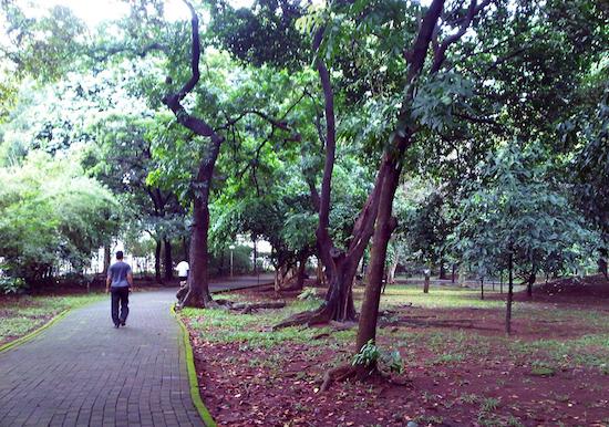 Taman Krida Loka