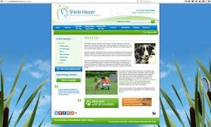 Sheila Harper LTD, dog training, dog behaviour, dog body language, courses