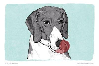 Lip Lick – Dog Body Language