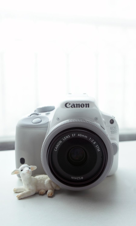2014-canon-100d