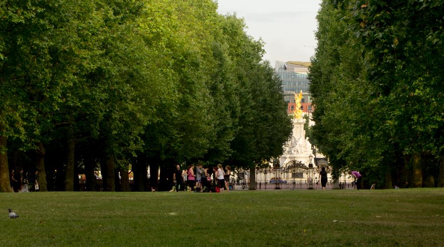 2014-green-park-A4-04